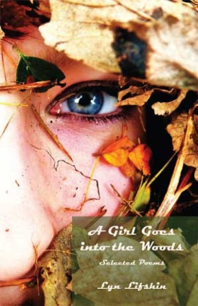 A Girl Goes into the Woods book cover