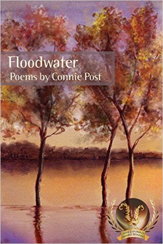 floodwater-cover-medium