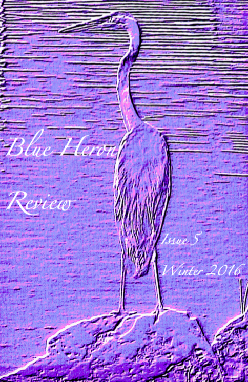 BHR Winter 2016 cover design image