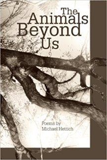The Animals Beyond Us