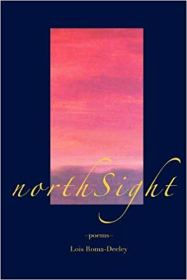 northSight, cover copy