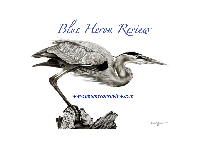 "(Artwork, ""Great Blue Heron,"" by Daniel Adams"